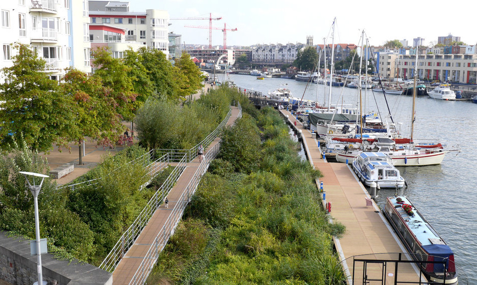 City nature: creating space for nature in cities